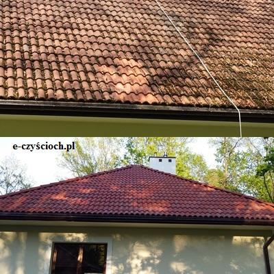 czyszczenie dachu z mchu i porostu